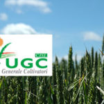 UGC CISL: Fabio Ingrosso confermato Presidente